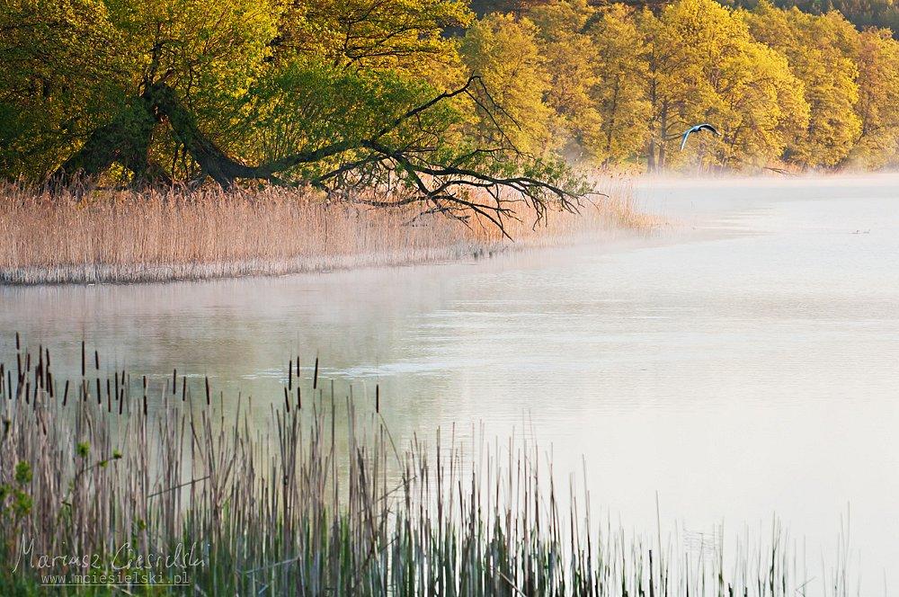 Jeziora III